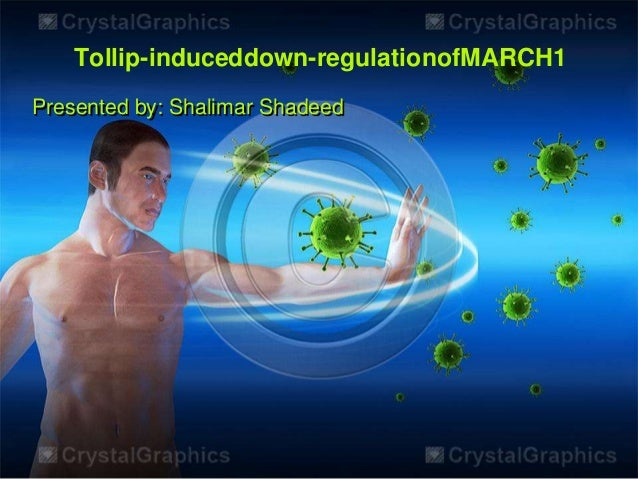 Tollip-induceddown-regulationofMARCH1Presented by: Shalimar Shadeed