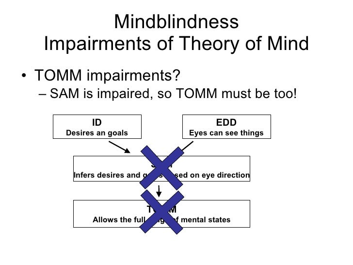 mindblindness as essay on autism and theory of mind Linking theories to practice: exploring theory of mind, weak central cohesion, and executive functioning in mindblindness: an essay on autism and theory of mind.