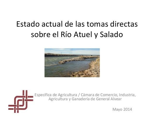 Estado actual de las tomas directas sobre el Río Atuel y Salado Específica de Agricultura / Cámara de Comercio, Industria,...