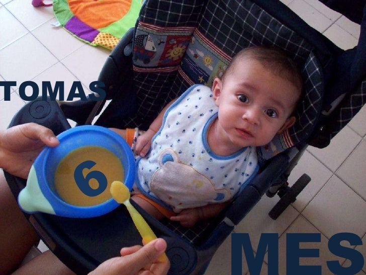 6 MES TOMAS