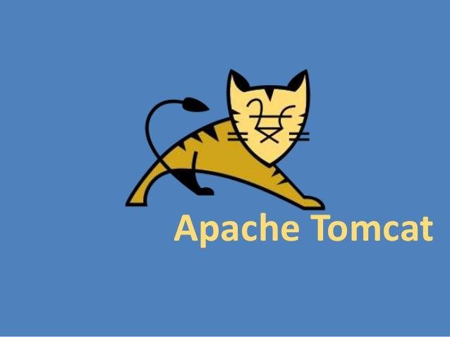 Tomcat yant