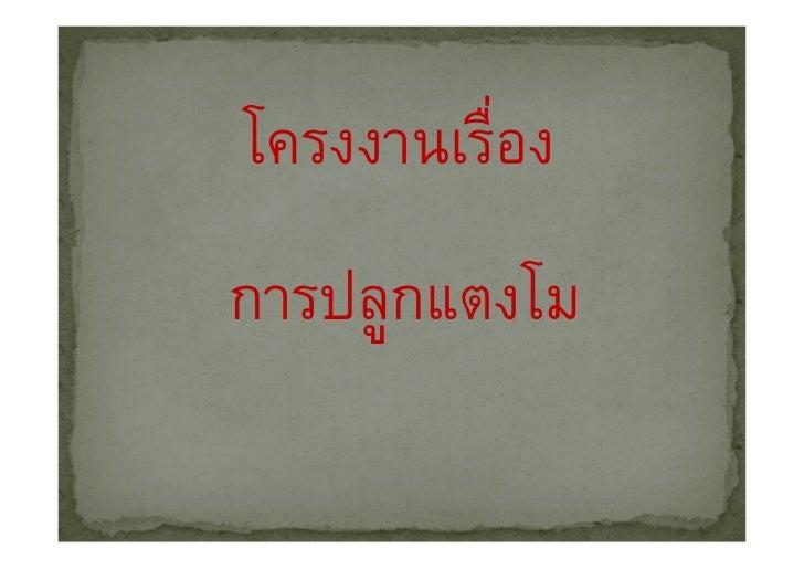 Tong44