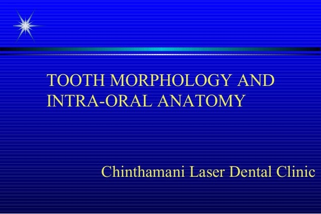 TOOTH MORPHOLOGY AND INTRA-ORAL ANATOMY  Chinthamani Laser Dental Clinic