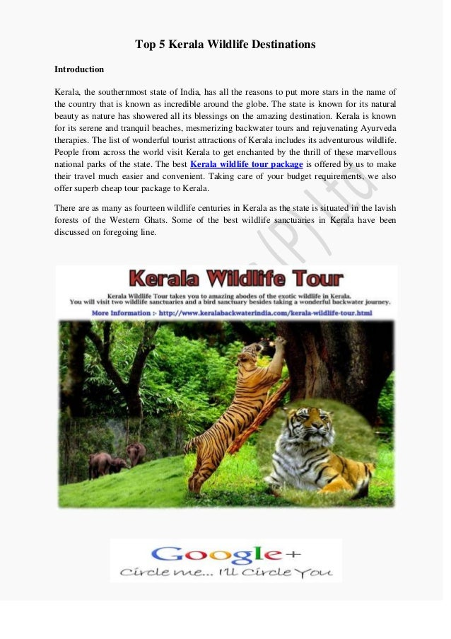 Top 5 kerala wildlife destinations