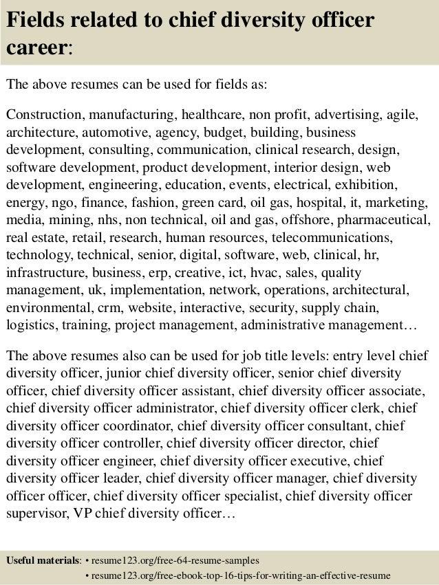 Diversity Consultant Sample Resume