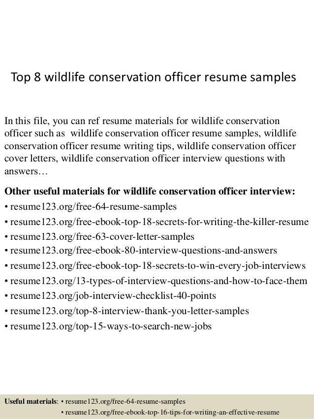 It Officer Resume