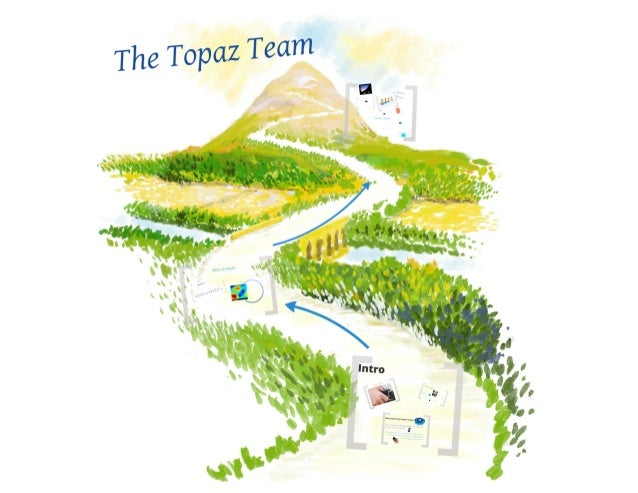 Topaz project
