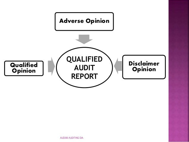 Disclaimer Of Opinion Audit Report Form 5500
