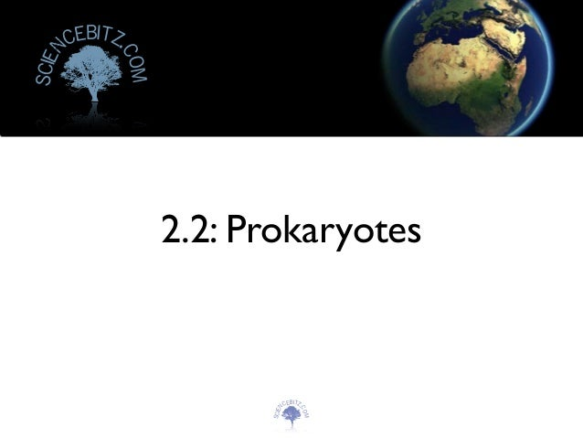 Topic 2.2   prokaryotes