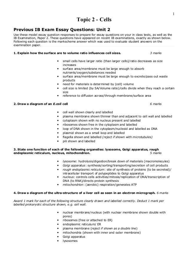 Ib chinese sample exam ib chinese sample exam essays
