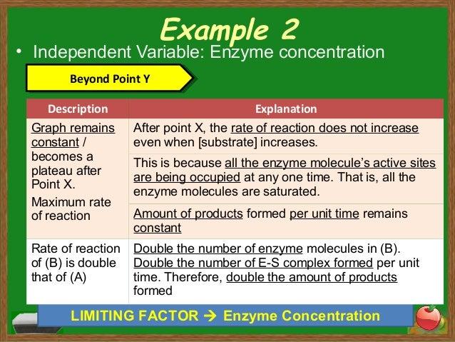 Enzyme Concentration Enzyme Concentration
