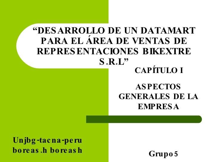""""""" DESARROLLO DE UN DATAMART PARA EL ÁREA DE VENTAS DE REPRESENTACIONES BIKEXTRE S.R.L"""" CAPÍTULO I ASPECTOS GENERALES DE LA..."""