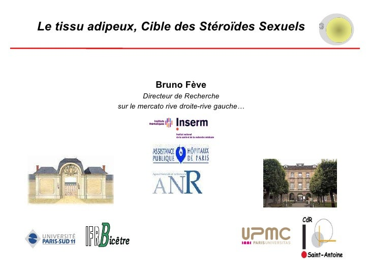 Bruno Fève Directeur de Recherche sur le mercato rive droite-rive gauche… Le tissu adipeux, Cible des Stéroïdes Sexuels IF...