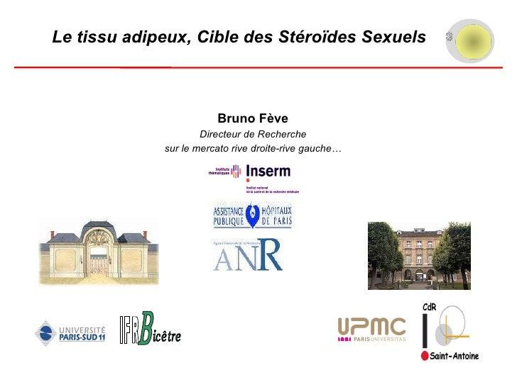 Tissu adipeux et hormones sexuelles