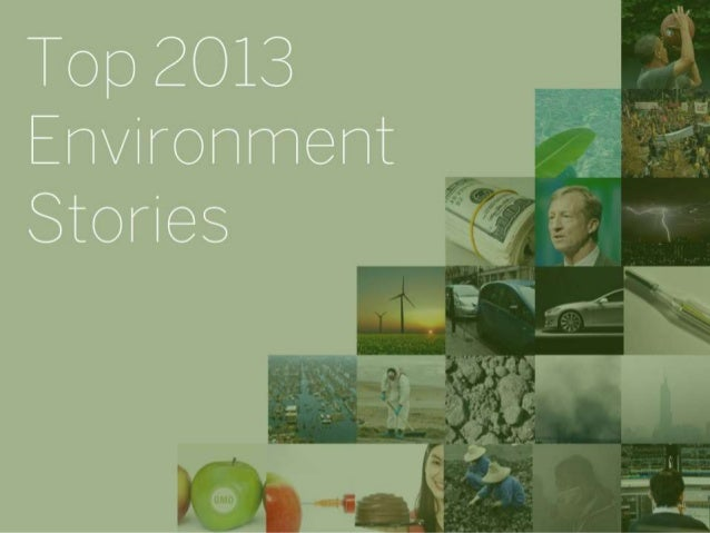 Top Stories 2013 Environment