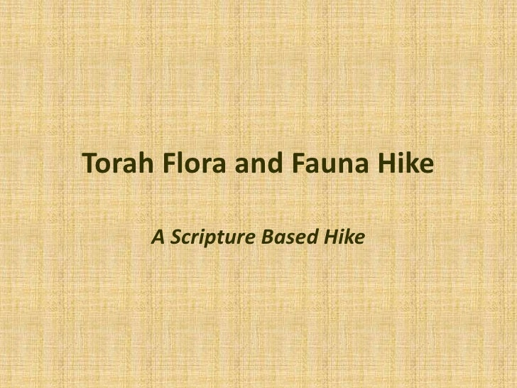 Torah Flora and Fauna Hike<br />A Scripture Based Hike<br />