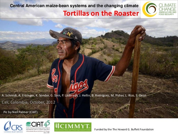 Central American maize-bean systems and the changing climate                                               Tortillas on th...