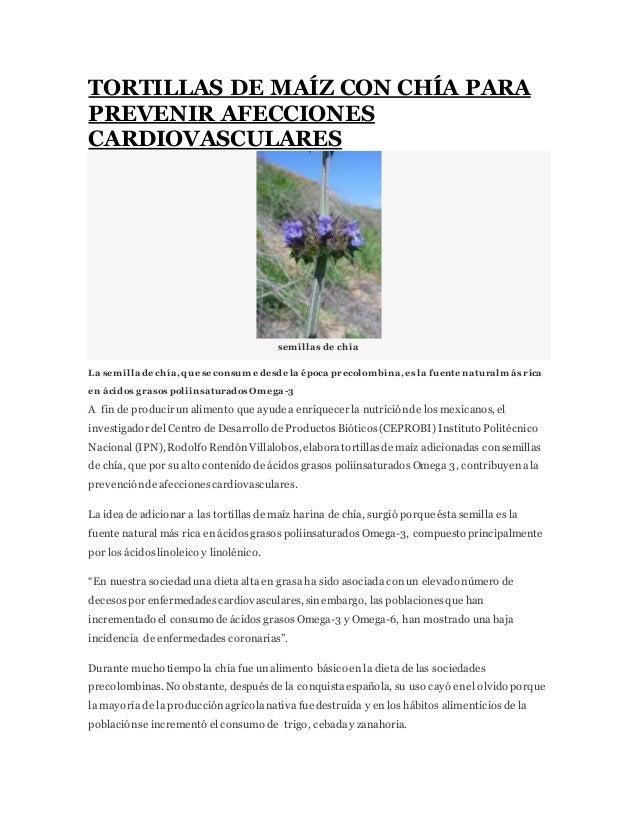 TORTILLAS DE MAÍZ CON CHÍA PARA PREVENIR AFECCIONES CARDIOVASCULARES sem illas de chia La semilla de chía, que se consume ...