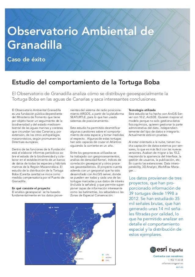 Observatorio Ambiental de Granadilla Caso de éxito  Estudio del comportamiento de la Tortuga Boba El Observatorio de Grana...