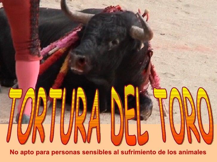 TORTURA DEL TORO No apto para personas sensibles al sufrimiento de los animales