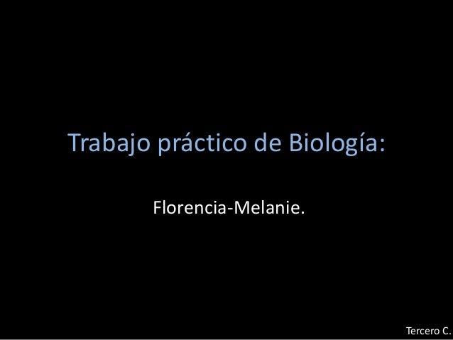 Trabajo práctico de Biología: Florencia-Melanie. Tercero C.