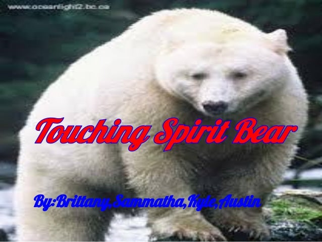 Touching Spirit Bear Characters