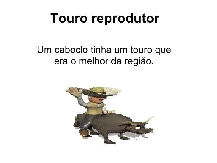 Touro reprodutor