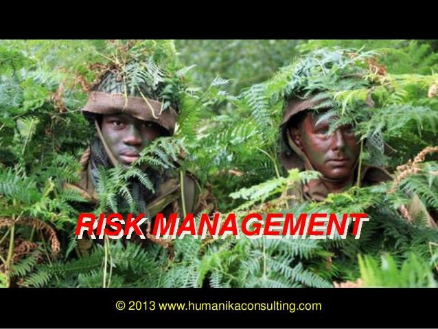 RISK MANAGEMENT © 2013 www.humanikaconsulting.com