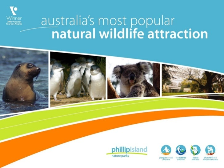 Tour operators information   phillip island nature parks