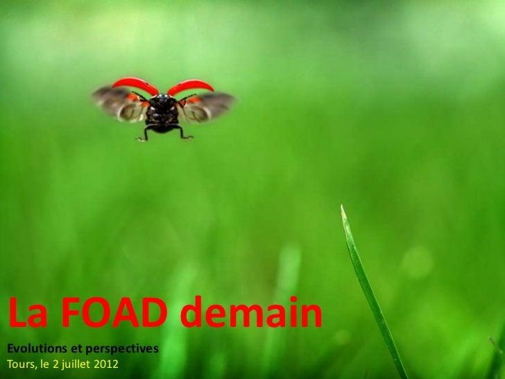 Perspectives d'évolution pour la FOAD