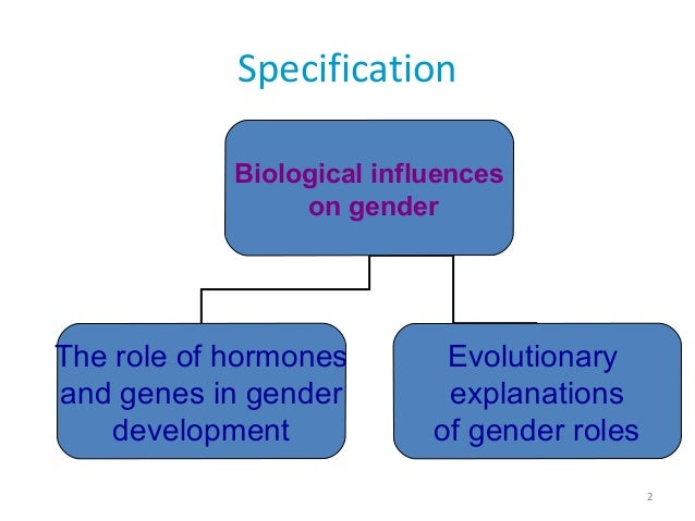 biological influences on gender essay Biological influences on gender essay b pages:6 words:1413 this is just a sample to get a unique essay  we will write a custom essay sample on biological influences on gender specifically for you for only $1638 $139/page  + biological sex is the primary factor contributing to a sense of gender.