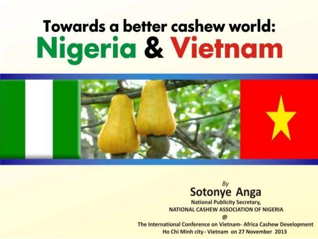 Towards a better cashew world. nigeria & vietnam by sotonye anga new
