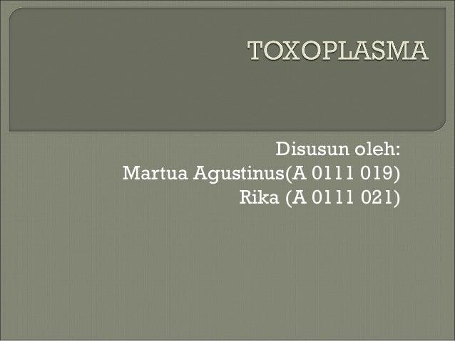 Disusun oleh:Martua Agustinus(A 0111 019)           Rika (A 0111 021)