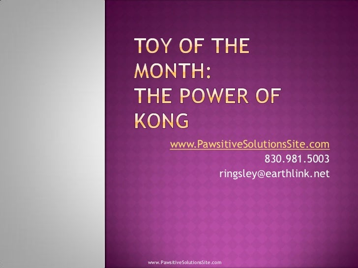 Toy Of The Month Announced - The Power Of KONG Endorsed By San Antonio Dog Obedience Classes