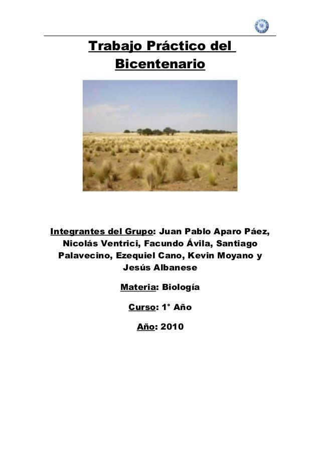 Trabajo Práctico del Bicentenario Integrantes del Grupo: Juan Pablo Aparo Páez, Nicolás Ventrici, Facundo Ávila, Santiago ...