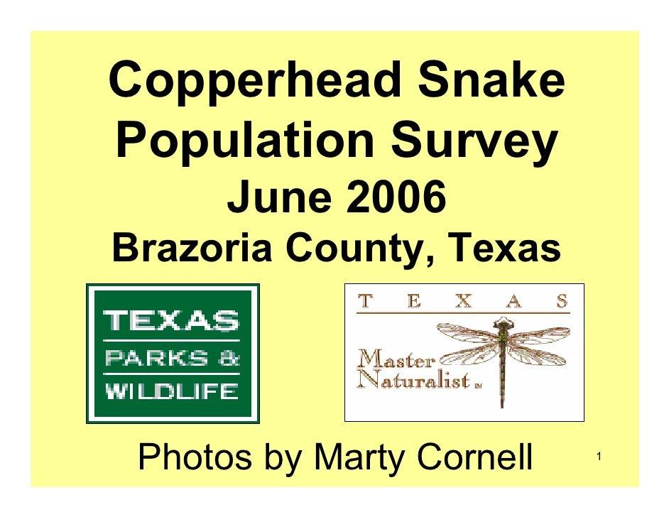 Tp copperhead survey