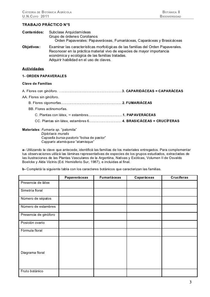 CÁTEDRA DE BOTÁNICA AGRÍCOLA                                                                             BOTÁNICA II U.N.C...
