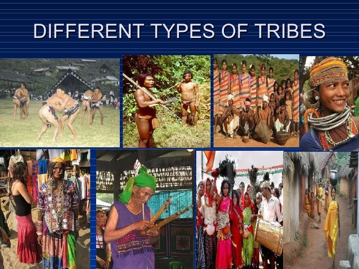 types of tribes in india In india, tribes are mostly referred to as adivasis which is a generic term  in the present day, the kalbelia people perform a specific type of dance,.