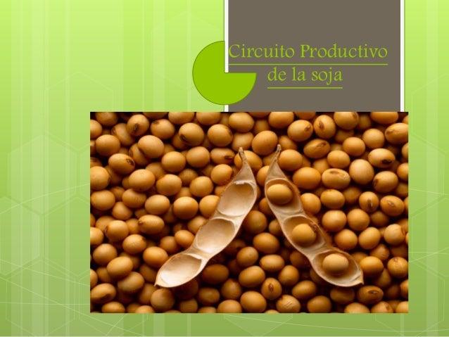 Circuito Productivo de la soja