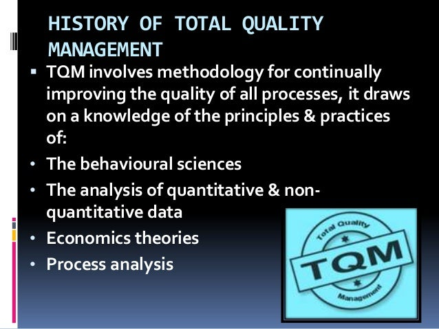 total quality tq model and methodologies essay