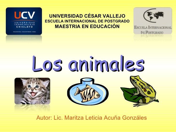 Los animales Autor: Lic. Maritza Leticia Acuña Gonzáles UNIVERSIDAD CÉSAR VALLEJO ESCUELA INTERNACIONAL DE POSTGRADO MAEST...