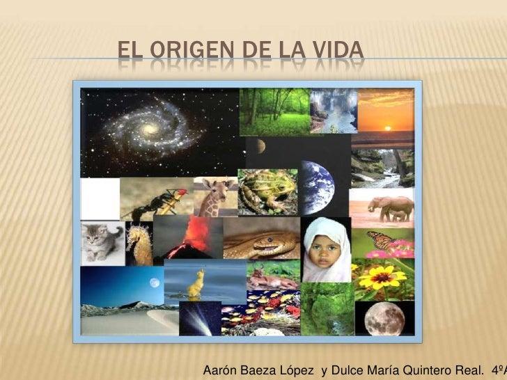 El origen de la vida<br />Aarón Baeza López  y Dulce María Quintero Real.  4ºA. <br />