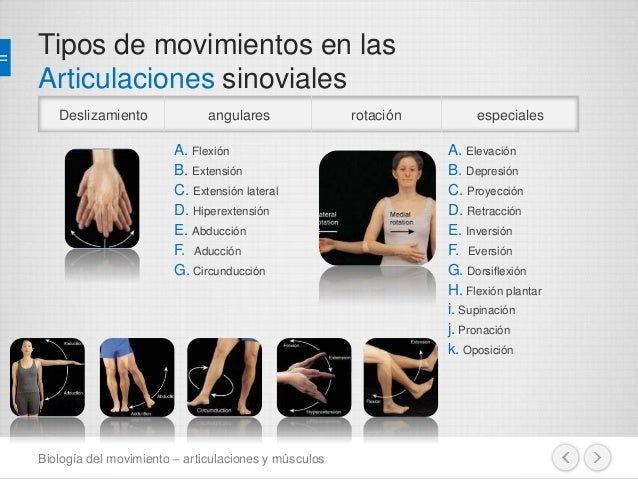 M sculos y articulaciones - Tipos de sensores de movimiento ...