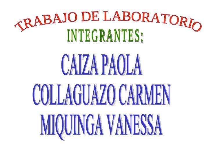 TRABAJO DE LABORATORIO INTEGRANTES: CAIZA PAOLA COLLAGUAZO CARMEN MIQUINGA VANESSA