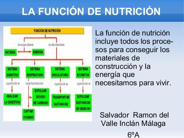 La Nutrición. Presentación de Salvador