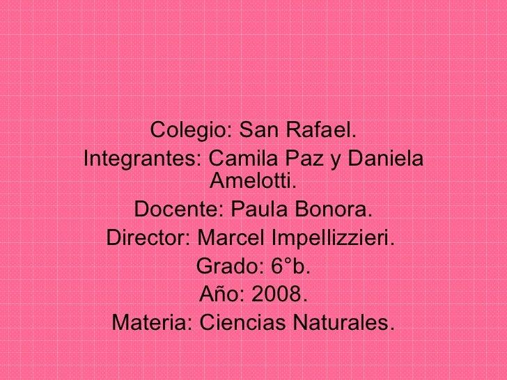 Colegio: San Rafael. Integrantes: Camila Paz y Daniela Amelotti. Docente: Paula Bonora. Director: Marcel Impellizzieri.  G...