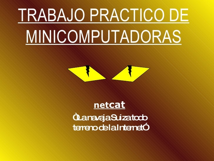 NetCat (only Hackers)