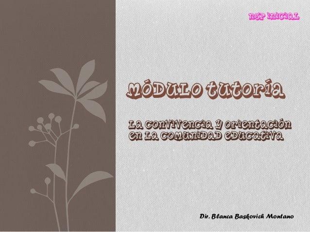 NSP InicialMÓDULO TUTORÍALa Convivencia y orientaciónen la comunidad Educativa            Dir. Blanca Baskovich Montano