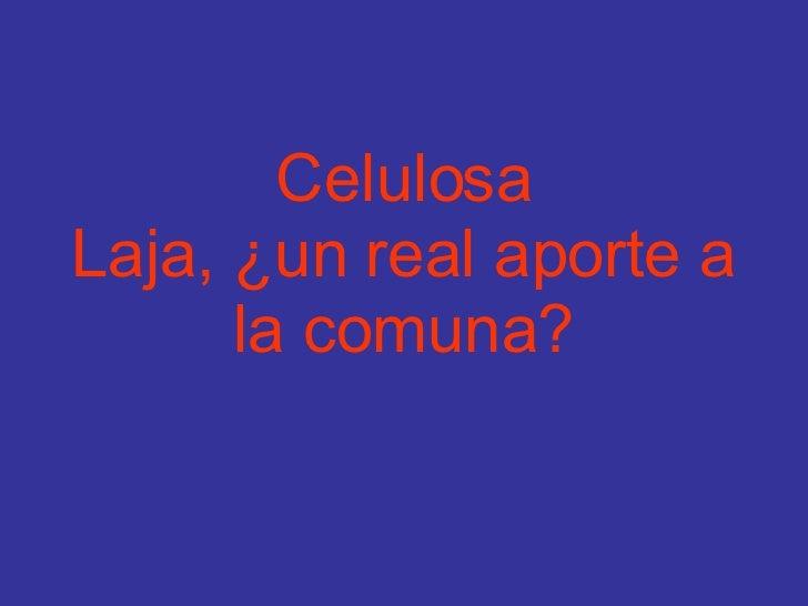 Celulosa Laja, ¿un real aporte a la comuna?