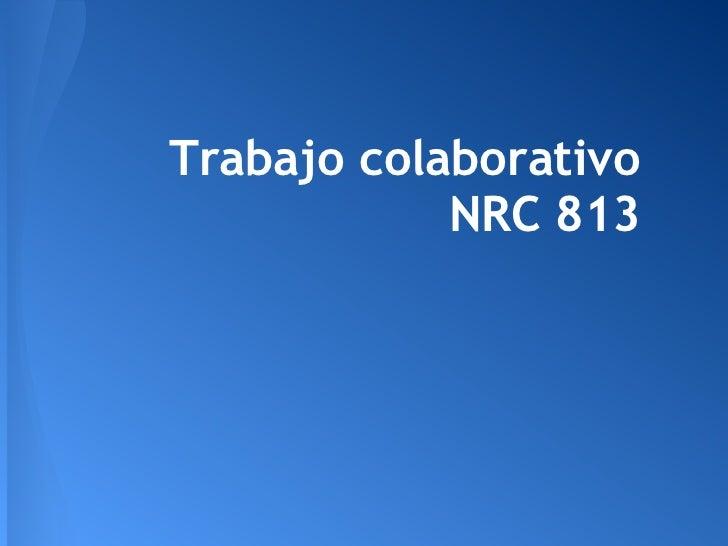 Trabajo colaborativo            NRC 813